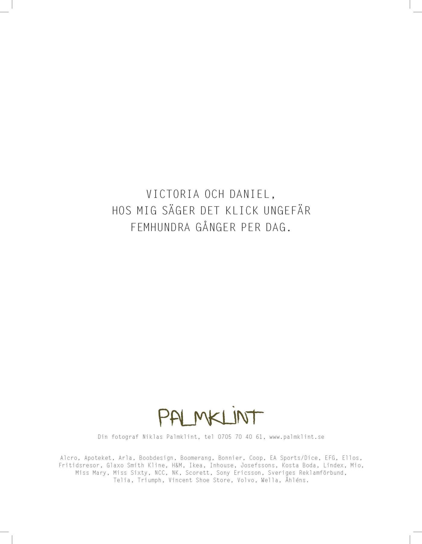 Niklas Palmklint, annons, Guldäggsboken 2010