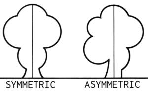Symmetrisk och asymmetrisk designprincip